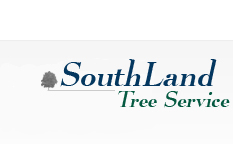 Tree Service Fulton County